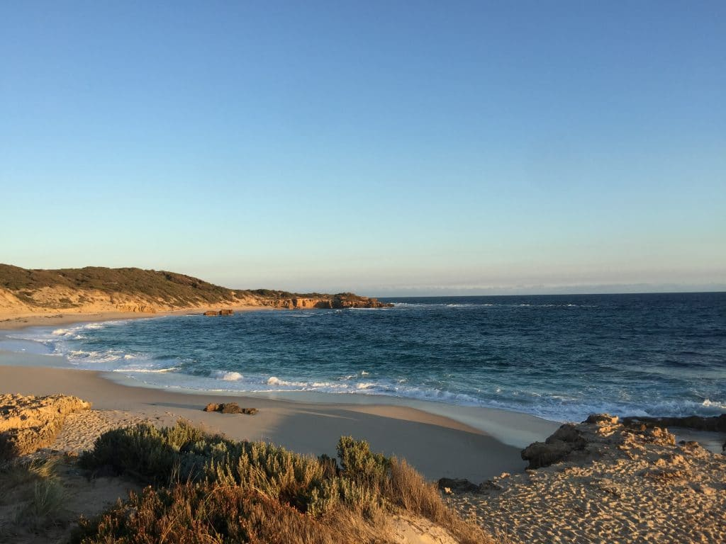 beautiful beaches for Family and Pet Friendly Mornington Peninsula Accommodation